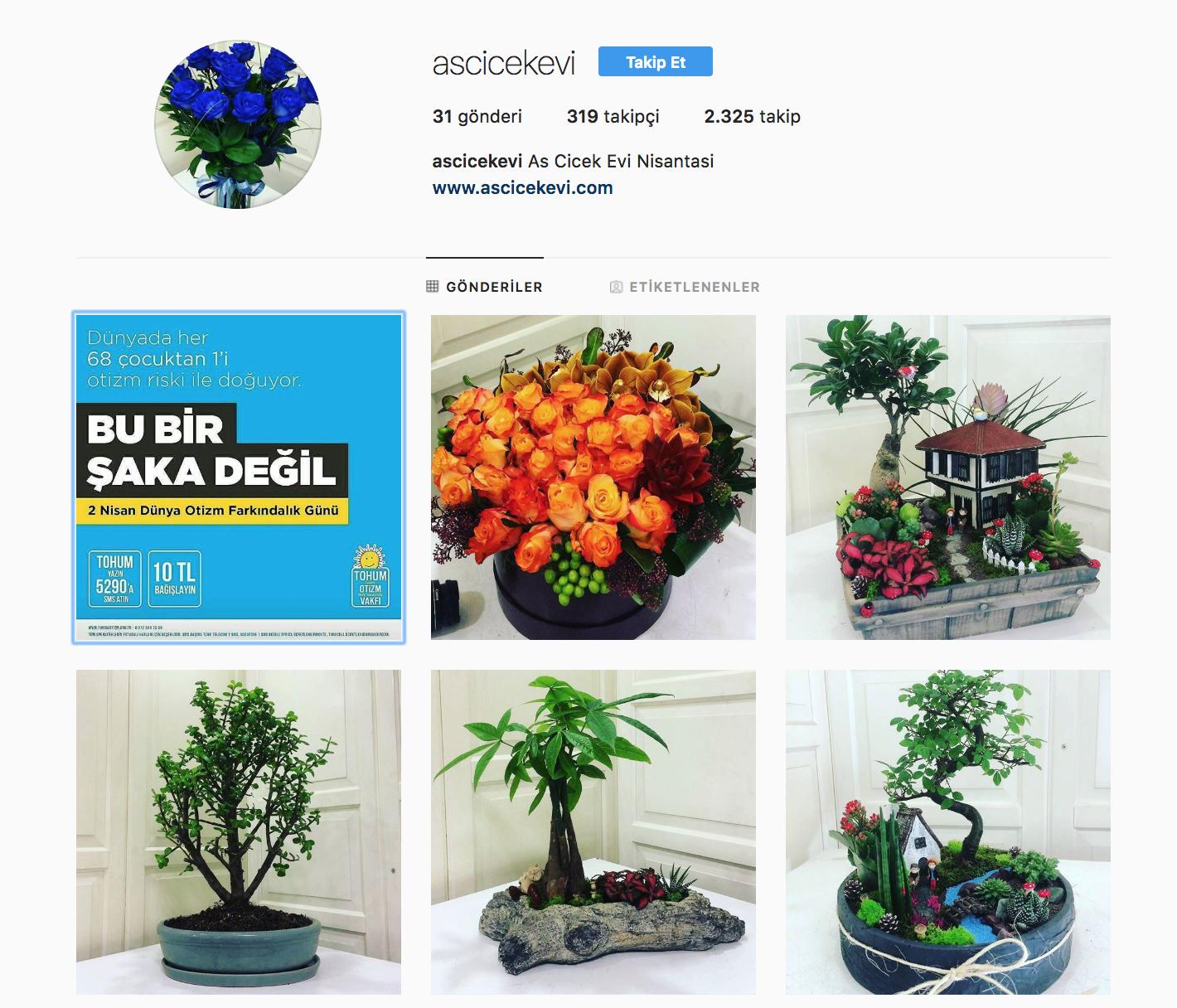 as-cicek-evi-instagram