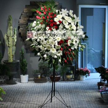 Butik Açılışına Hangi Çiçek Gönderilmeli?