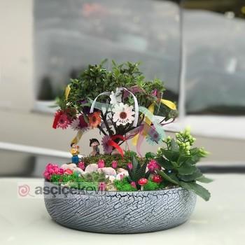 Hediyelik Küçük Saksı Çiçekleri