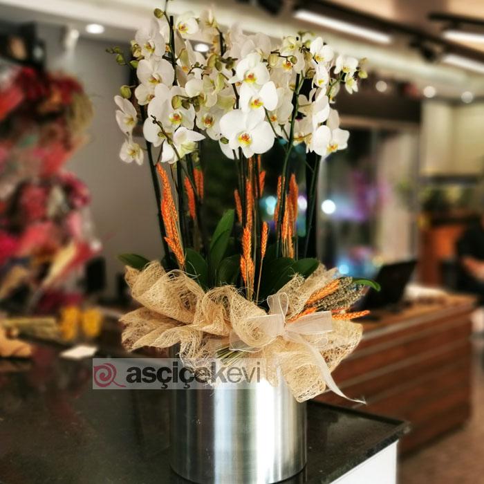 Metalde 10 Dal Beyaz Orkide