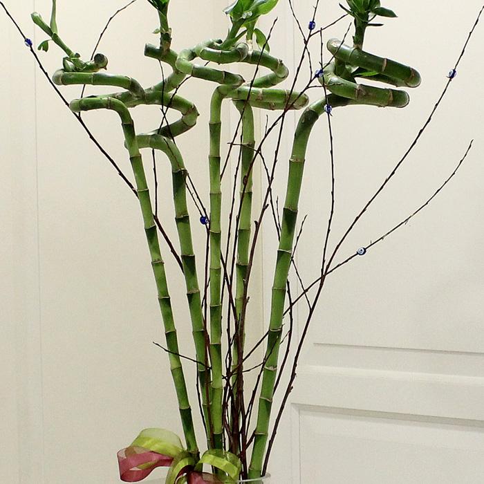 İyi Şanslar 5 Bambu alt