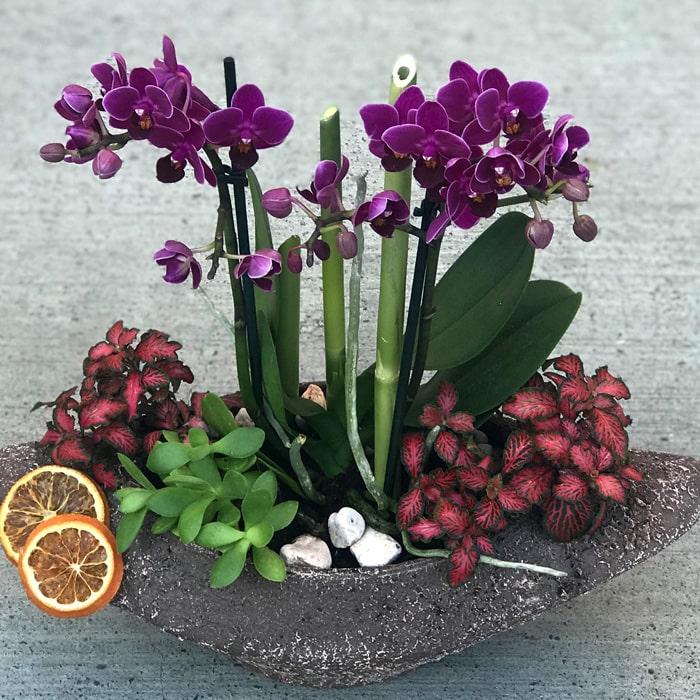 Çırağan Çiçek Tasarım alt