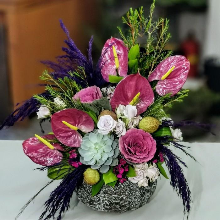 Roxette Anthurium alt