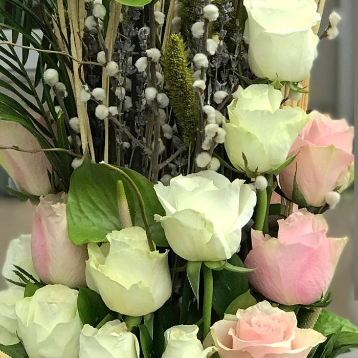 Pembe Beyaz Güller alt