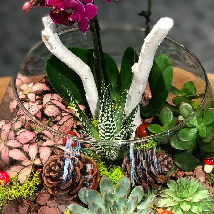 Bomonti Teraryum Çiçek alt