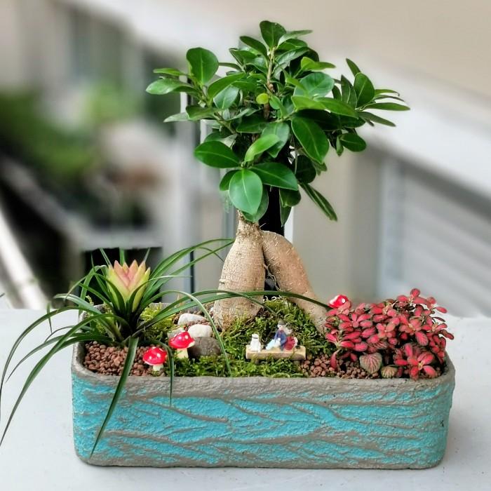 Bonsai Bahçesi alt