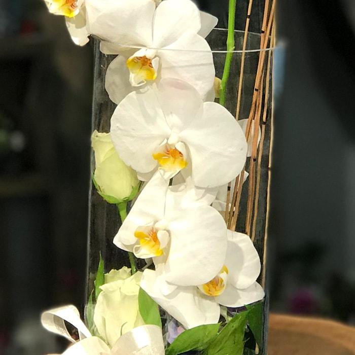 Cam İçinde Beyaz Orkide alt