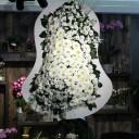 Beyaz Gelin Duvağı