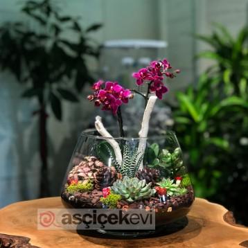 Bomonti Teraryum Çiçek