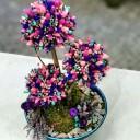 Gypsofilya Ağacı