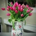 Kütahya Serisi - Columbus Tulips