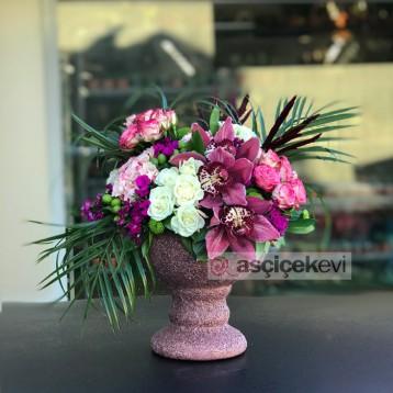 Orkide ve Mini Güller