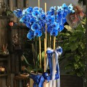 6 Dallı Mavi Orkide