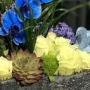 Küçükyalı Çiçek Aranjman