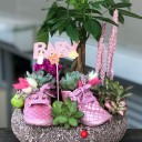 Bebek Çiçeği Teraryum - Kız