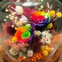 Emerye Kuru Çiçek Tanzimi
