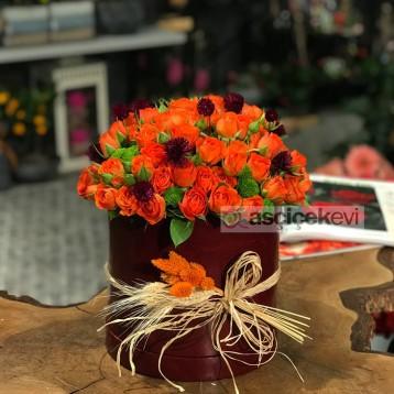 Orange Mini Güller