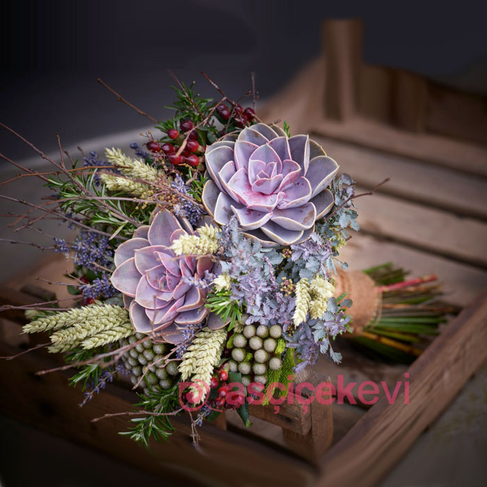 Egzotik Gelin Çiçeği