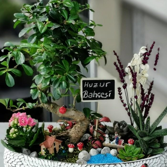 Bonsai ve Bahçe alt