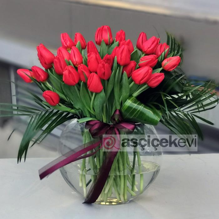 Kırmızı Laleler - Tutkulu Aşk