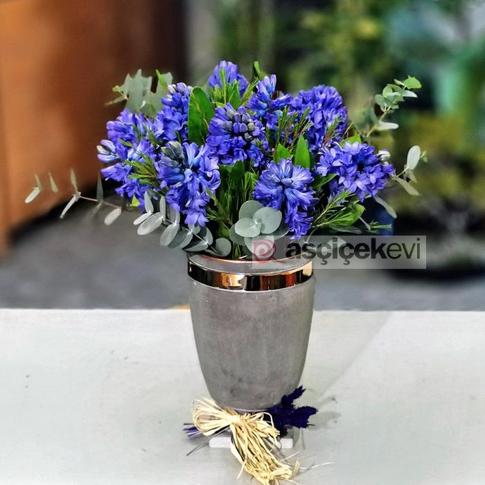 Mor Sümbüller