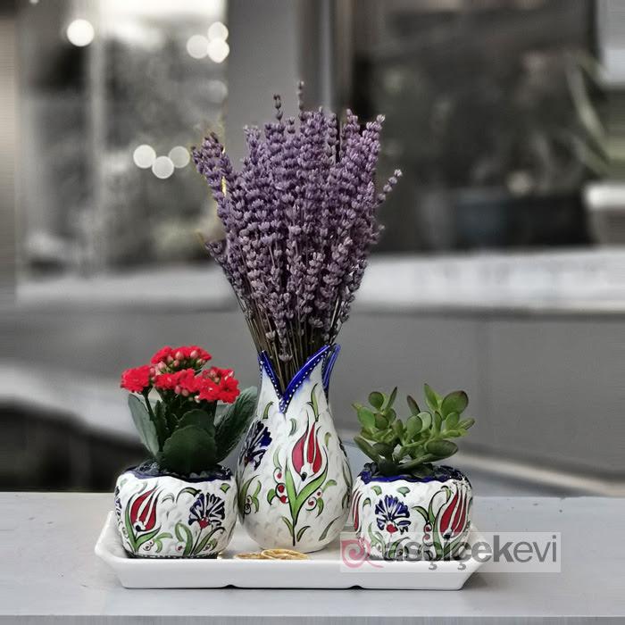 Kütahya Serisi - crassula Lavanta