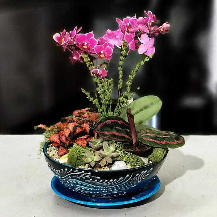 Mini Orkide Bahçe alt