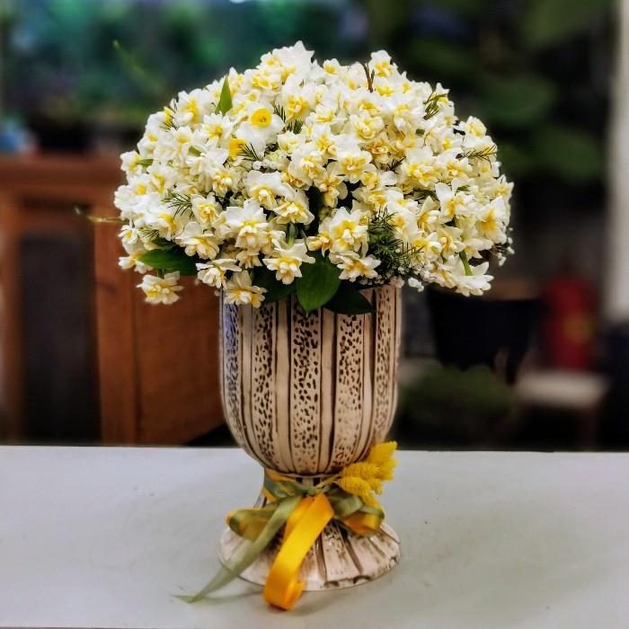 Vazoda Kokulu Nergis Çiçeği